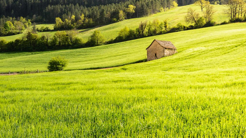 La maisonnette dans le champ